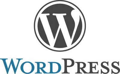 10 Reasons Why you should use WordPress on your Business Website