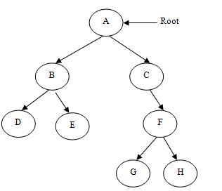 Difference between Trees and Graphs | Trees vs  Graphs